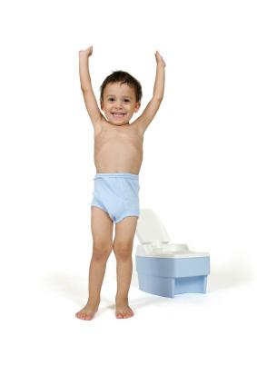 potty-trainingboys.net